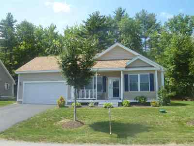 Laconia Single Family Home For Sale: 87 Natures View Drive