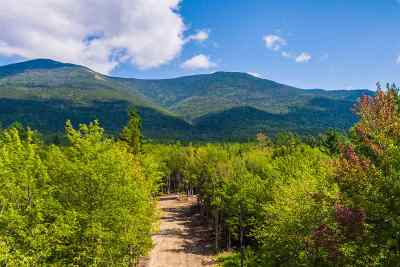 Easton Residential Lots & Land For Sale: 30a Pine Needle Lane
