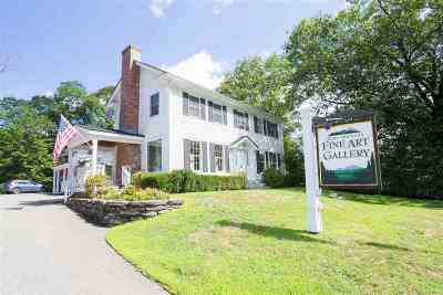Stowe Multi Family Home For Sale: 64 South Main Street