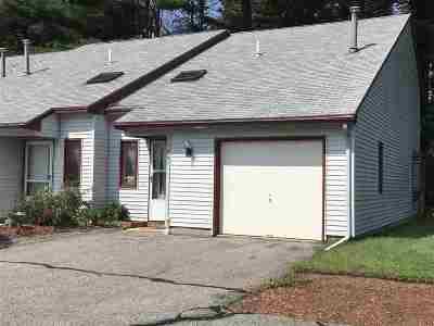 Nashua Condo/Townhouse For Sale: 241 Stonebridge Drive