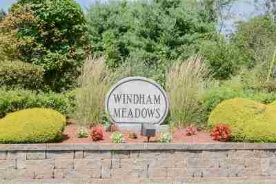 Windham Condo/Townhouse For Sale: 55 Brookview Road