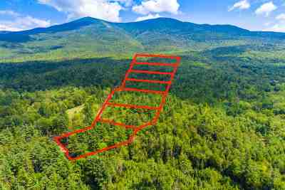 Easton Residential Lots & Land For Sale: 25-A1 Pine Needle Lane
