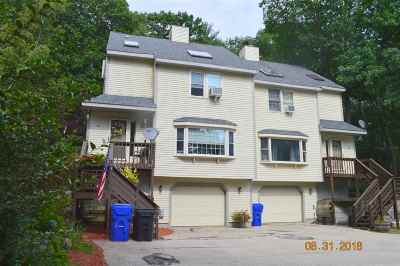 Hudson Condo/Townhouse For Sale: 81 Robinson Road #A