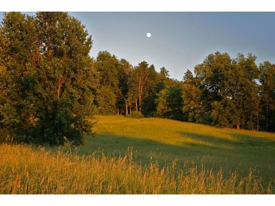 Addison County Residential Lots & Land For Sale: 1300 West Street