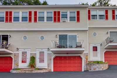 Belknap County Condo/Townhouse For Sale: 197 Scenic Drive #2