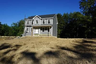 Epsom Single Family Home For Sale: 310 Lockes Hill Road