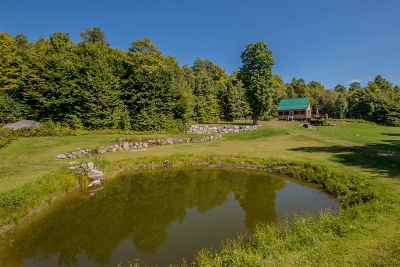 Essex County Single Family Home For Sale: 216 Wilderness Acres