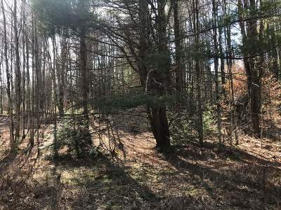 Westford Residential Lots & Land For Sale: Lot 8 Shady Lane #8