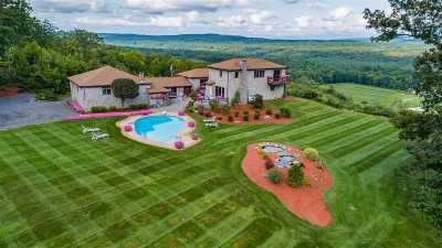 Merrimack County Single Family Home For Sale: 451 Daniel Webster Highway