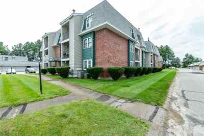 Nashua Condo/Townhouse For Sale: 3 Roedean Drive #102