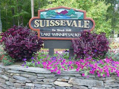 Moultonborough Residential Lots & Land For Sale: States Landing Road #Lots 27
