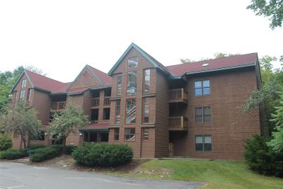 Woodstock Condo/Townhouse For Sale: 45 Riverfront Drive #239