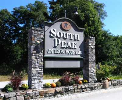 Lincoln Residential Lots & Land For Sale: 144 South Peak Lot #5 Road #5