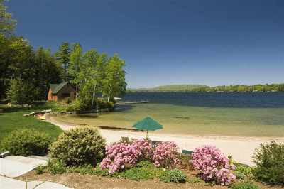 Moultonborough Single Family Home For Sale: 124 Hauser Estates Road