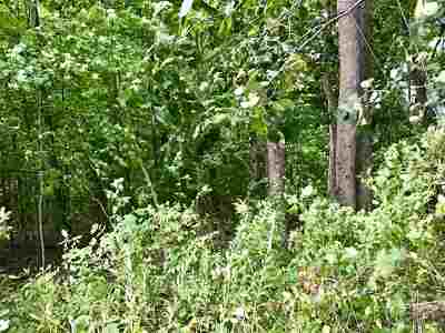 Castleton Residential Lots & Land For Sale: Route 30 North Highway