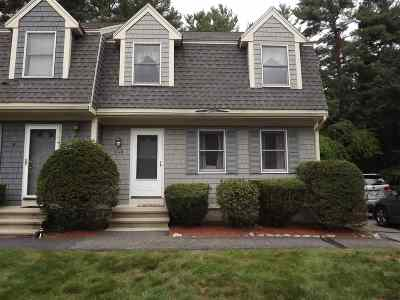 Hudson Condo/Townhouse Active Under Contract: 24 Holly Lane #B