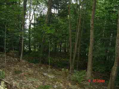 Wallingford Residential Lots & Land For Sale: Vt Route 140w