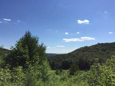 Poultney Residential Lots & Land For Sale: 451 Clark Hollow Road Hollow
