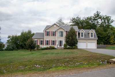 Merrimack County Single Family Home For Sale: 6 Samuels Court
