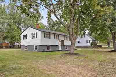 Nashua Single Family Home For Sale: 20 White Plains Drive