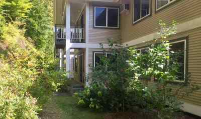 Stowe Condo/Townhouse Active Under Contract: 125 Thomas Lane #414
