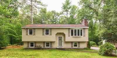 Goffstown Single Family Home For Sale: 39 Evergreen Drive