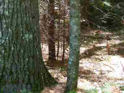 Carroll County Residential Lots & Land For Sale: 4-30c Chase Road