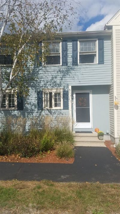 Hudson Condo/Townhouse For Sale: 112 Fox Hollow Drive