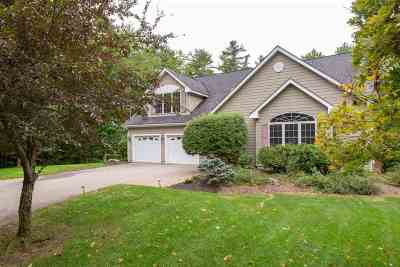 Belknap County Single Family Home For Sale: 50 Dewitt Drive
