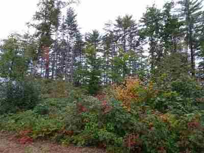 Sanbornton Residential Lots & Land For Sale: 48,49,50 Park View Drive