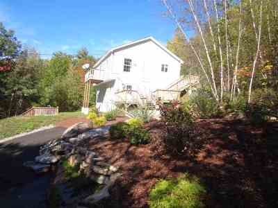 Gilford Single Family Home For Sale: 159 Mountain Drive
