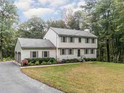 Hudson Single Family Home For Sale: 24 Lenny Lane