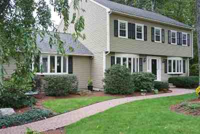 Nashua Single Family Home For Sale: 72 Spindlewick Drive