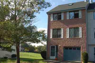 Merrimack Condo/Townhouse For Sale: 10 Vanden Road
