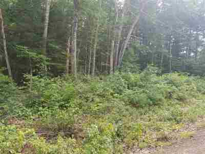 New Hampton Residential Lots & Land For Sale: 62 Forest Pond Road