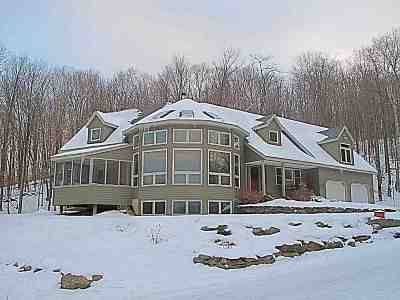 Chittenden County Single Family Home For Sale: 63 Palmer Lane