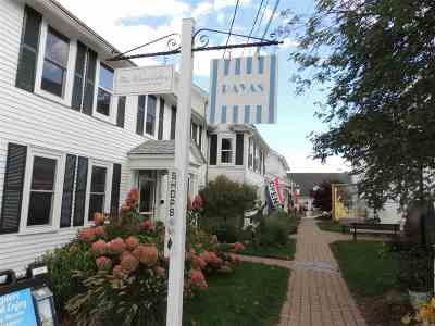 Meredith Multi Family Home For Sale: 38 Main Street