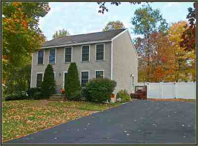 Rochester Single Family Home For Sale: 709 Portland Street