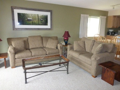 Cambridge Condo/Townhouse For Sale: Liftside 9 At Smugglers' Notch Resort