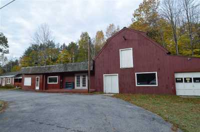 Newbury Single Family Home For Sale: 94 Route 103