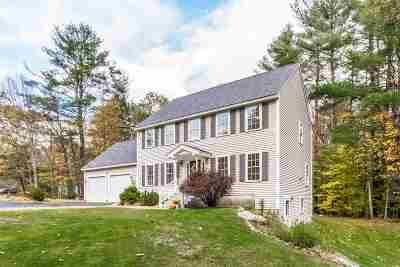 Merrimack County Single Family Home For Sale: 18 Kelso Drive