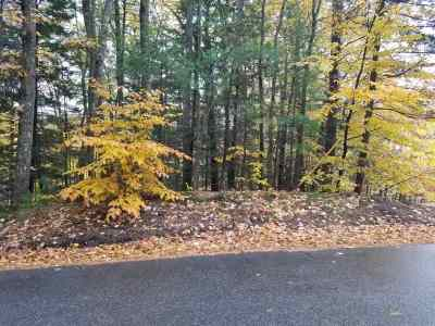 Gilford Residential Lots & Land For Sale: 69 White Birch Drive #4-69