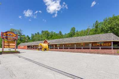 Lincoln Commercial For Sale: 408 Us Route 3