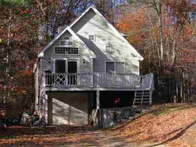 Moultonborough Single Family Home For Sale: 206 Paradise Drive