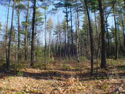 Francestown Residential Lots & Land For Sale: Second Nh Turnpike North #Lot 1