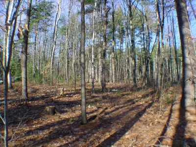 Francestown Residential Lots & Land For Sale: Second Nh Turnpike North #Lot 2