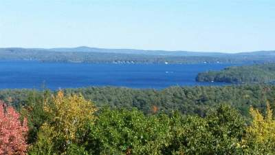 Belknap County Single Family Home For Sale: 41 Barefoot Place