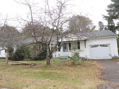 Chittenden County Single Family Home For Sale: 93 Village Green