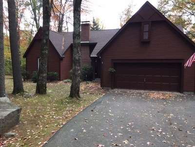Wolfeboro Single Family Home For Sale: 35 Robin Acres Drive