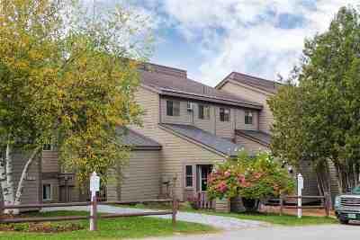 Cambridge Condo/Townhouse For Sale: 4323 Vermont Route 108 South #M-13